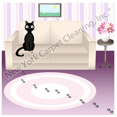 carpet cleaning pet stain remover