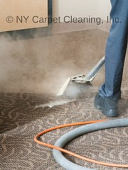 Carpet Cleaners - Deep Cleaning