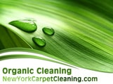organic cleaning in new york